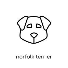 Norfolk Terrier Dog Icon. Tren...