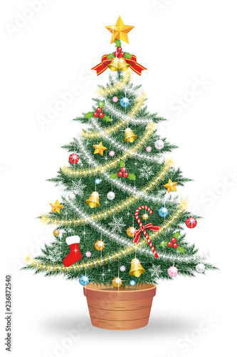 Fotografía  クリスマスツリー 白背景