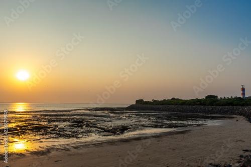 Sunrise scene at Goplanth village seashore near Bhavnagar - India Canvas Print