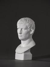 Agrippa Plaster Figure. For Dr...