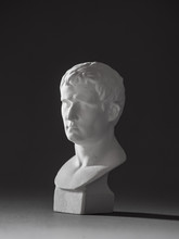 Agrippa Plaster Figure. For Dr...