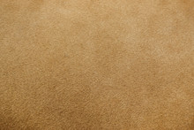 Real Lion Fur Texture