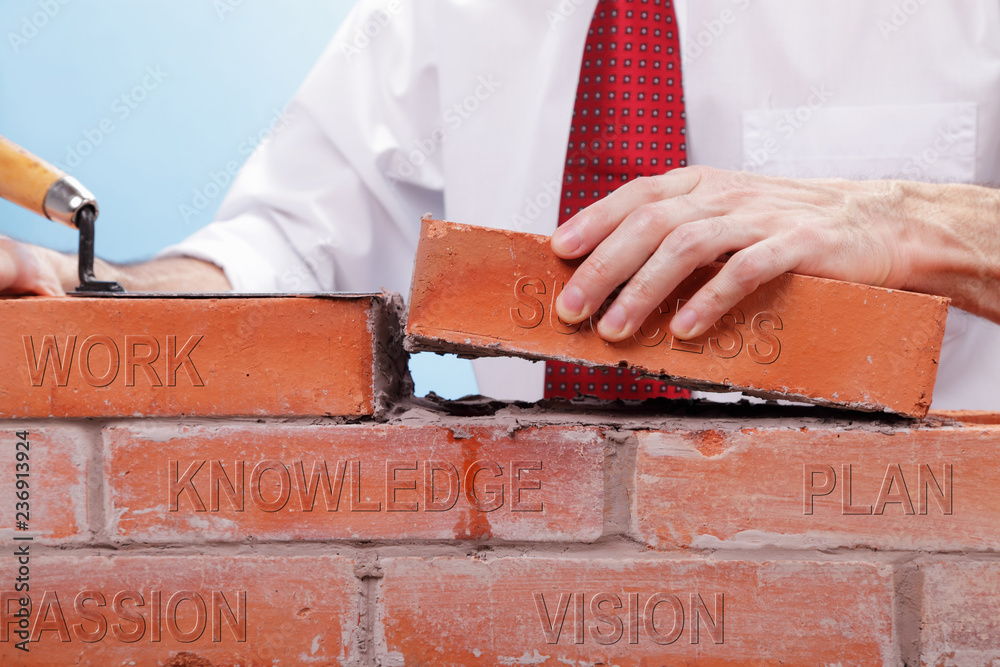 Fototapeta Businessman building a wall with bricks that have differents concepts printed on them. Concept for building a business or project..