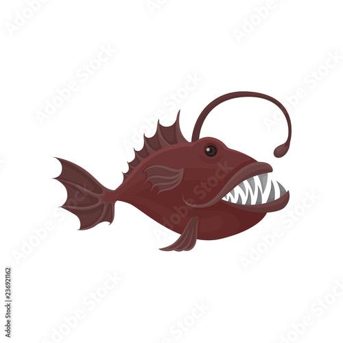Fotografia, Obraz  Small piranha with big sharp teeth