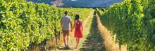Winery Vineyard Tourists Coupl...