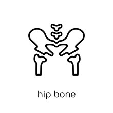 Hip Bone Icon. Trendy Modern Flat Linear Vector Hip Bone Icon On White Background From Thin Line Human Body Parts Collection