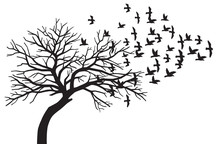 Scary Bare Black Tree Silhouette And Flock Of Flying Birds