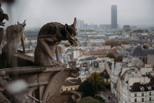 Close-up Of Gargoyles On Notre Dame Cathedral, Paris, France