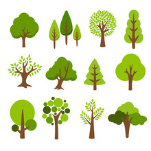 Collection Of Trees. Tree Set ...