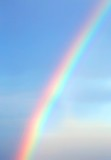 Fototapeta Rainbow - Bright rainbow in the blue sky