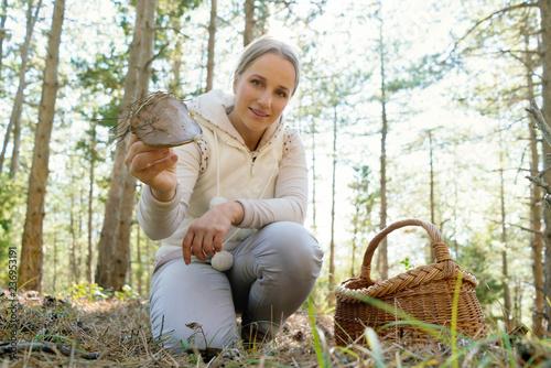 Fototapeta  Mushrooming, woman picking mushrooms in the forest