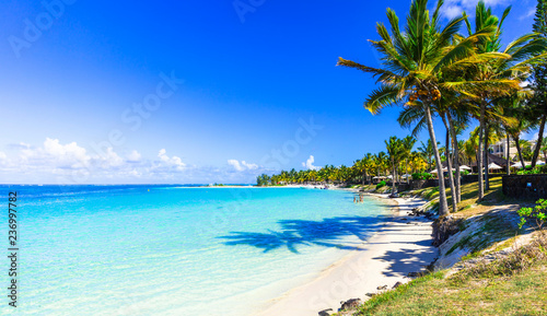 Poster Beach amazing tropical beach scenery. Mauritius island, Bel mare