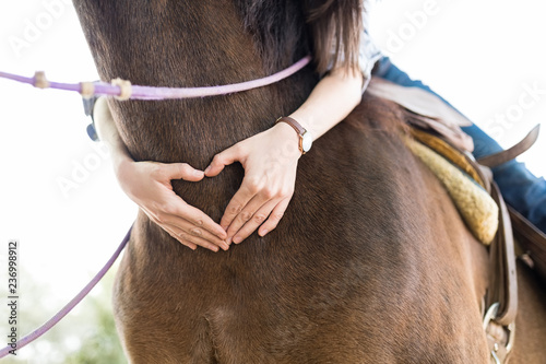 Fototapeta Woman Representing Love While Making Heart Shape On Horse obraz
