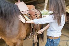 Woman Tightening Horse Saddle ...
