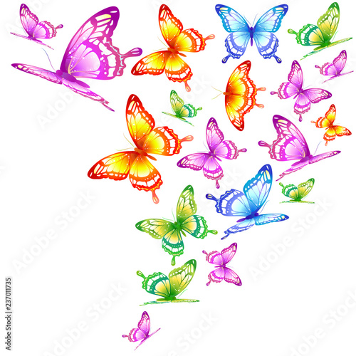 beautiful color butterflies,set, isolated  on a white © aboard