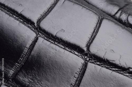 Fotografie, Obraz  Texture di pelle di coccodrillo