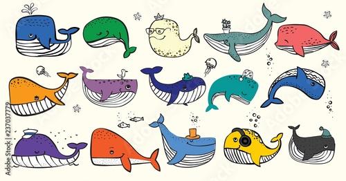 Fototapeta premium Ilustracja wektorowa z ładny wielorybów oceanicznych w kolorze i innych mieszkańców morza - wektor