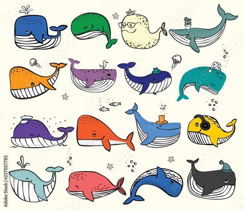 Naklejka premium Ilustracja wektorowa z ładny wielorybów oceanicznych w kolorze i innych mieszkańców morza - wektor