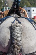 Brabant Draft Horse With Braid...