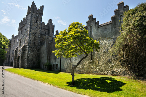 The old castle in Howth. Ireland Canvas Print