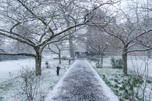 Snowing In Cambridge, England, February 2018