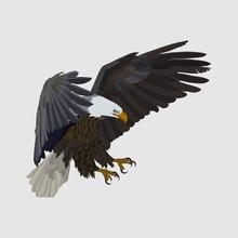 Realistic Eagle Soaring Eagle,...