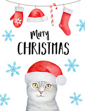 """Hand Drawn Watercolour Greeting Card Design: Curious Fluffy Kitten Dressed In Traditional Santa Claus Hat, Garland With Holiday Symbols, Blue Falling Snowflakes And Festive Writing: """"Merry Christmas""""."""