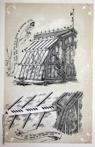 Valokuva Greenhouse retro illustration
