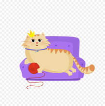 Princess Cat Lying On The Sofa...
