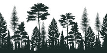 Silhouette Of Pine Forest Illustration