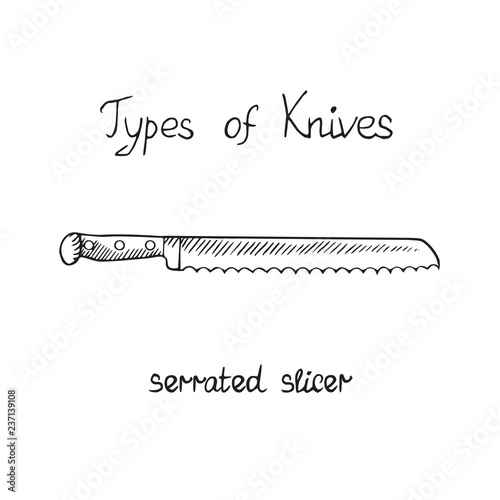 Obraz na plátně  Knife types, slicer serrated, vector outline illustration with inscription