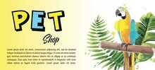 Brochure For Pet Shop. Poster, Banner, Flyer Design.