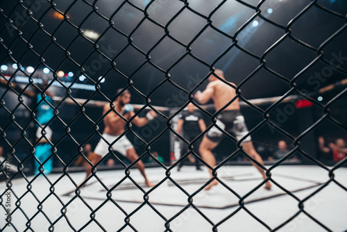 Tela Two fighters in ultimate fight cage during the match