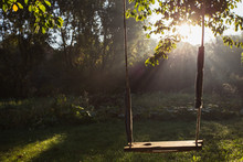 Baby Swing Morning Dawn