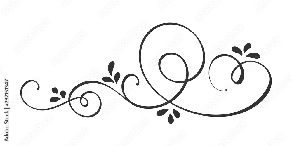 Fototapety, obrazy: Vector Hand Drawn Calligraphic Spring Flourish Design Elements. Floral light style decor for web, wedding and print. Isolated on white background Calligraphy and lettering illustration