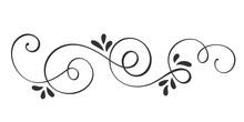 Vector Hand Drawn Calligraphic...