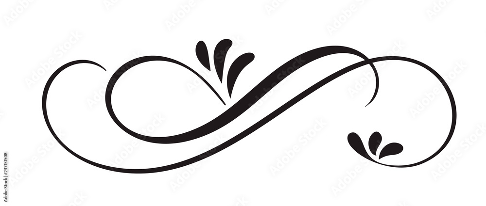 Fototapeta Hand Drawn Calligraphic Floral Spring Flourish Design Elements in style isolated on white background. Vector calligraphy and lettering illustration