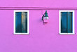 Leinwanddruck Bild - Beautiful windows with blue shutters and lamp on purple pink wall. Colorful houses on Burano island near Venice, Italy
