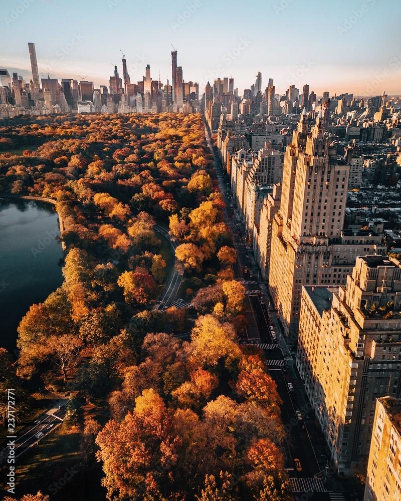 Fototapety, obrazy: Central Park Fall