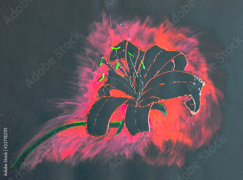 Vászonkép  Beautiful lily flower on black paper