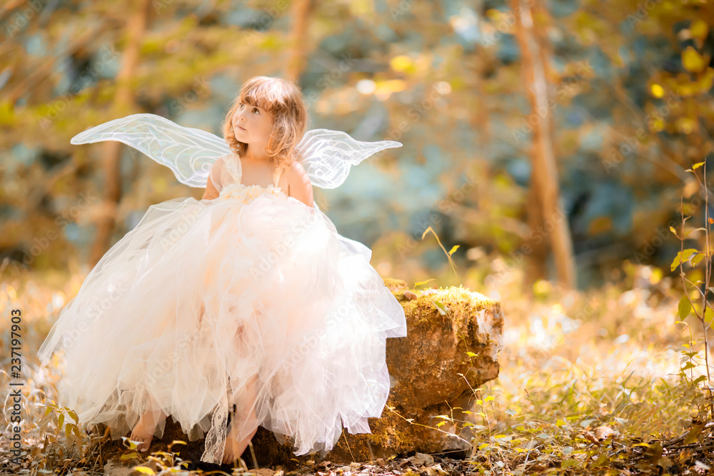 Fototapeta Fairy tale consept. Little toddler girl wearing beautiful princess dress with fairy wings