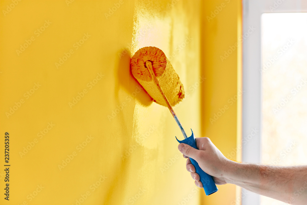 Fototapeta Male hand painting wall with paint roller. Painting apartment, renovating with sunflower color paint