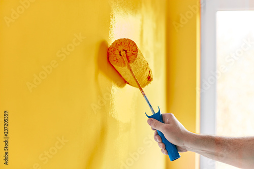 Fototapeta Male hand painting wall with paint roller. Painting apartment, renovating with sunflower color paint obraz
