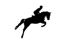 Equestrian Sport Man Rider Horse Jumping Competition