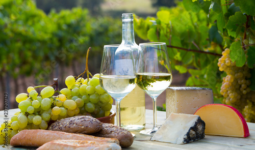 Wine, baguette, cheese against vineyard landscape Canvas Print