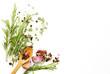 Leinwandbild Motiv Herbs and spices on white  - background for cooking