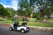 Electric Golf Cart In A Park
