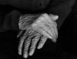 Dłonie staruszki, czarno białe.