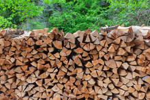 Stack Of Chopped Firewood In Forest