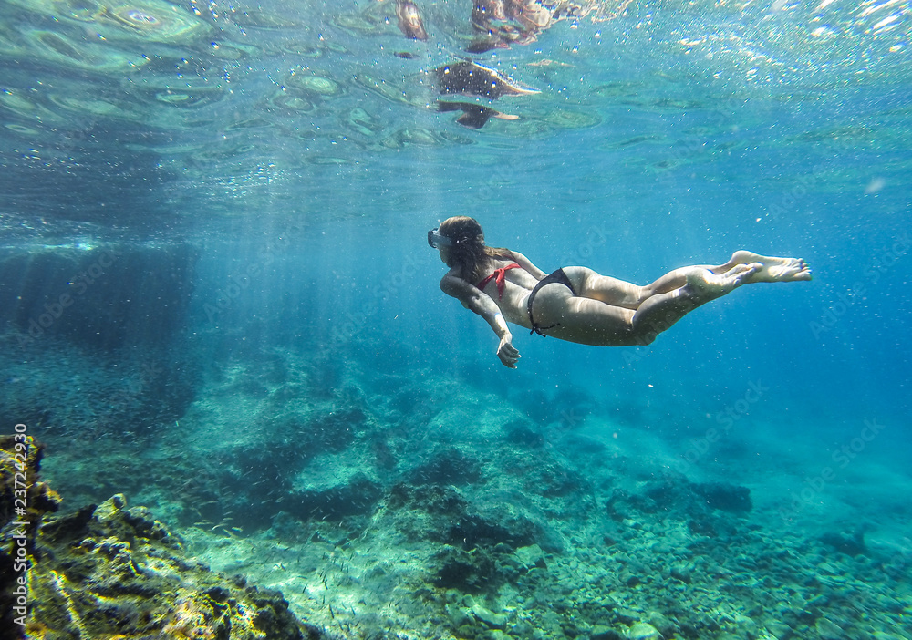 Fototapeta diver dives underwater, diver swims down to the bottom, snorkeling